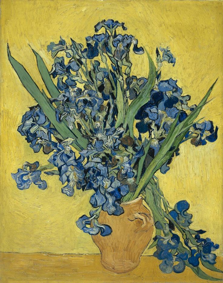 Vincent vanGogh  Irises,1890 Saint-Rémy-de-Provence