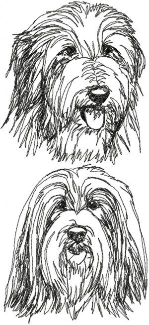 Advanced Embroidery Designs - Bearded Collie Set