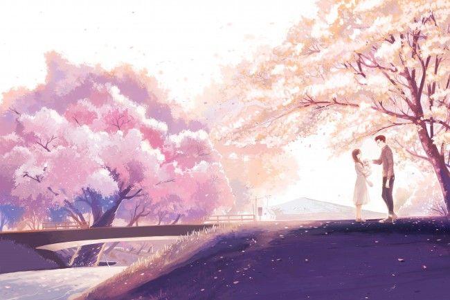 Anime Couple Anime Background Anime Cherry Blossom Anime Wallpaper