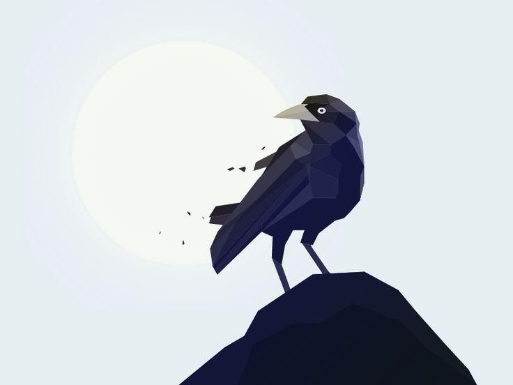 Crow on a rock by Lars Lundberg