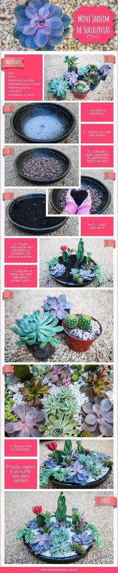 Mini jardim de suculentas                                                                                                                                                                                 Mais