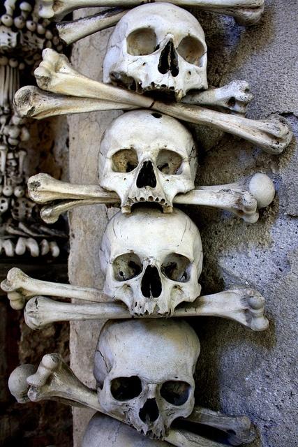 Skull & Bones by sami_sey, via Flickr