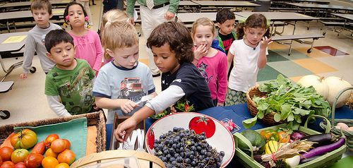 USDA's Farm to School Grant Program Connects Local Producers with Schools |