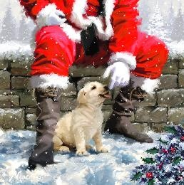 very cute Golden Puppy with Father Christmas from the P.D.S.A Catalogue