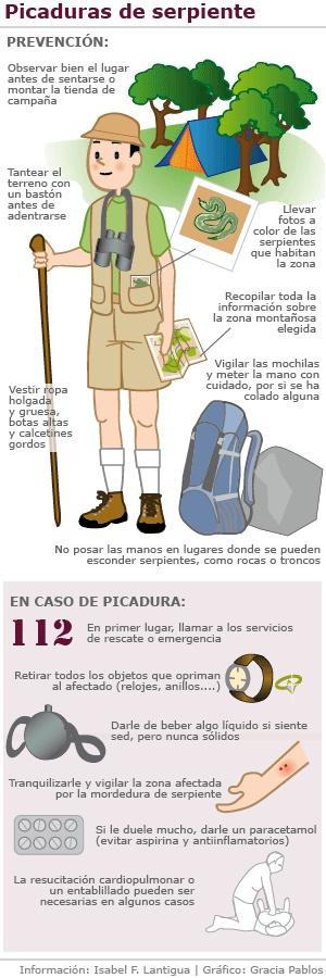 Infografía, cómo actuar ante una picadura de serpiente  http://www.cometelasopa.com/infografia-como-actuar-ante-las-picaduras-de-serpiente/