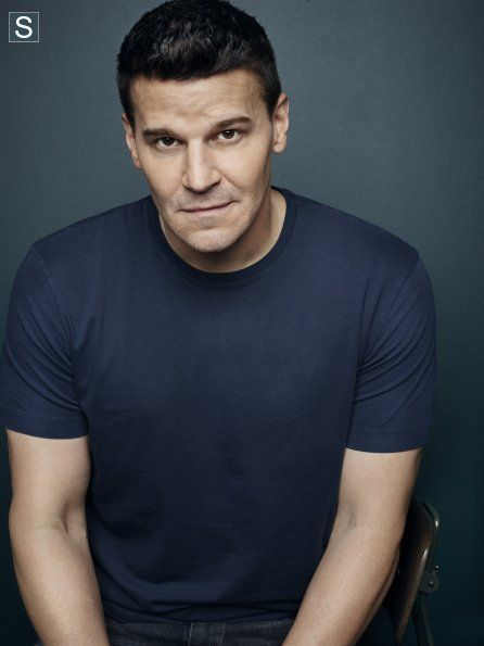 David Boreanaz was offered the opportunity to play Bruce Wayne in Batman Begins (2005) but turned it down.