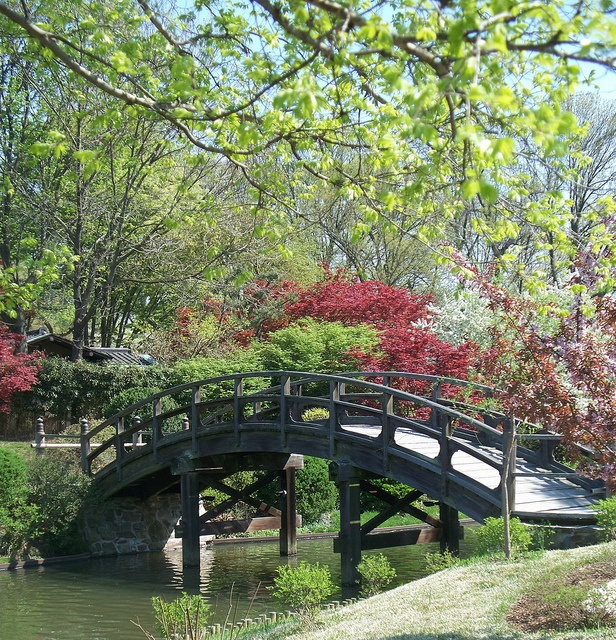25 Best Ideas About Missouri Botanical Garden On Pinterest Missouri St Louis St Louis Mo And