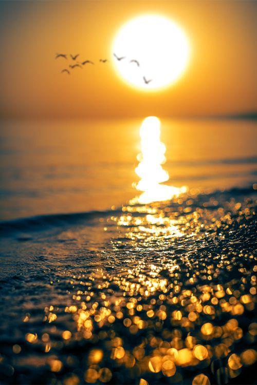 Estudiosos da Saúde informam: Tomar muito Sol - a Vitam. D3, direto na pele, evitando apenas a queimadura; proporciona e devolve a saúde, livrando-se de inúmeras doenças físicas, mentais, emocionais, inclusive as mais graves. Sunlight diamonds Sol - sunset sunrise - sun