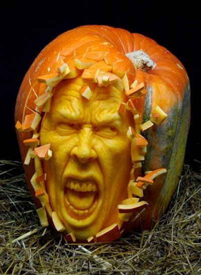 25+ best Pumpkin Ears images by DARGON/Tera-Alpha Media on Pinterest