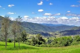 Northern Rivers NSW