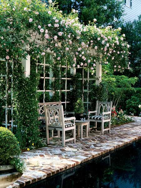 A rose covered dining area is heaven #Californiacasual #entertainingoutside @Stylebeat Marisa Marcantonio