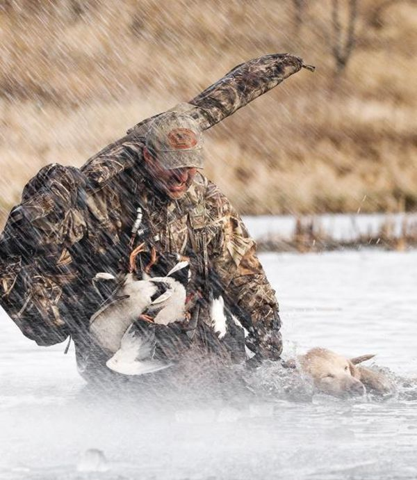 Ghastly weather, the kind that keeps most people indoors, sounds the alarm to waterfowlers that the best days afield have arrived. But if last season taught us anything, it's that Mother Nature is a fickle mistress--the 2011-12 season featured the greatest migration that never really happened. With two back-to-back record spring hatches, however, this season could serve as a huge comeback for duck and goose hunters.