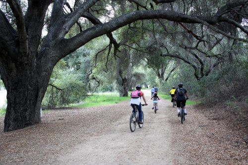 malibu creek state park in calabasas, ca 25 miles from downtown Los Angeles. hiking, fishing, bird watching and horseback riding.