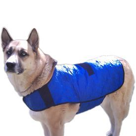 Hydro Kyle Dog Cool Coat for Large to Giant Breed - Buy Online Pet Food, Treats, Toys, Clothes, Socks, Shoes, Raincoat | Online Pet Shop | Online Pet Store India | petsGOnuts.com
