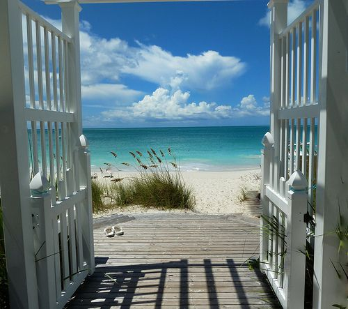 I want to be able to look out my back door & see this.