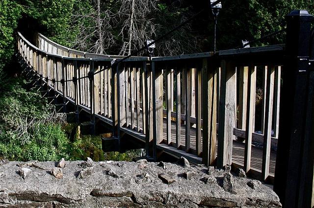 Belfountain Conservation Trail Bridge