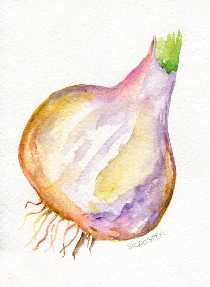 Aglio viola aglio pittura ad acquerello originale grosso