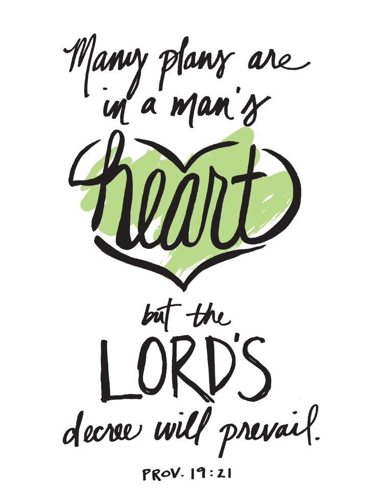 Proverbs 19:21 (KJV) ~ There are many devices in a man's heart; nevertheless the counsel of the Lord, that shall stand.