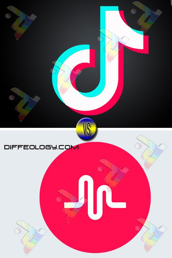 Difference Between Tiktok And Musically Music People S Republic Of China Tik Tok