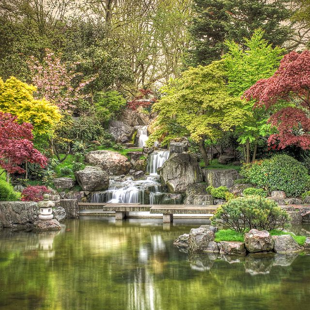 In perfectly manicured Holland Park, the Kyoto Garden provides a refreshing burst of colour and is home to a cascading waterfall, koi carp and the park's resident peacocks. Description from mumsinthewood.com. I searched for this on bing.com/images