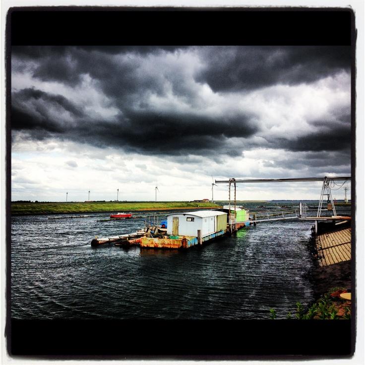 #vluchthaven #bruinisse