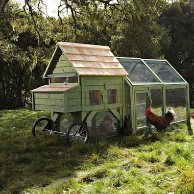 fun chicken coop idea that my ladies would love!!!:)