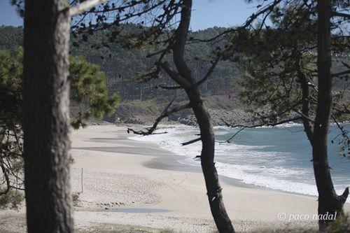 Melide Galicia spain