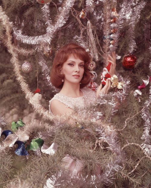 Italian actress & international sex symbol Gina Lollobrigida - Christmas early 60s