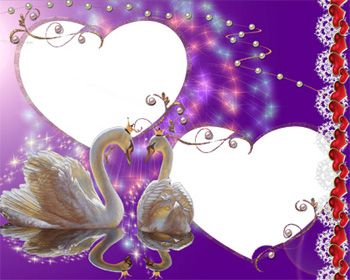 Love Photoshop Frames and Borders | PNG Template Wedding Swans Couple Shining Purple Frame