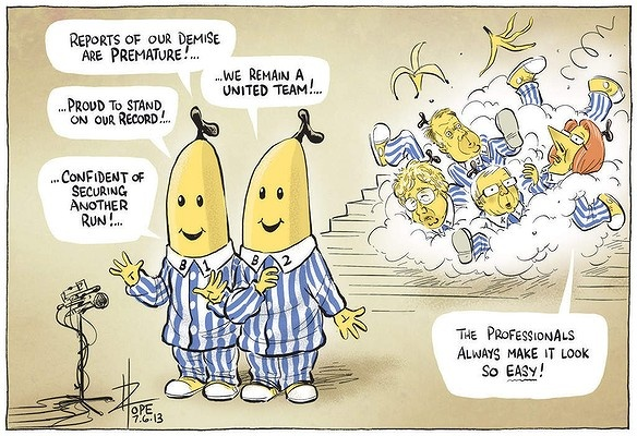 David Pope Editorial Cartoon The Canberra Times