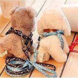 lesilverskys (TM) Fashion Arnés Ajustable de perros pequeños mascota cachorro gato arnés de nylon con plomo Correa de Tracción Cuerda de Dibujos Animados (1piece), color aleatorio