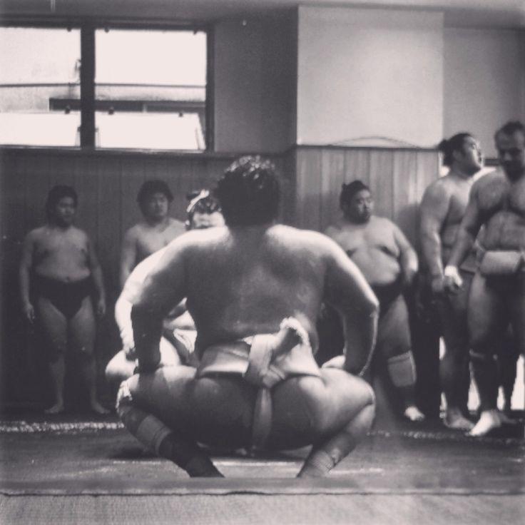 Sumo practice.