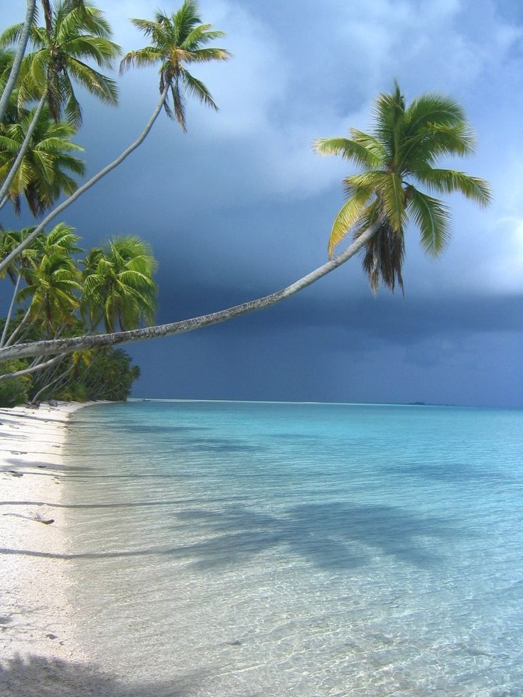17 Best Images About Tuamotu Archipelago On Pinterest