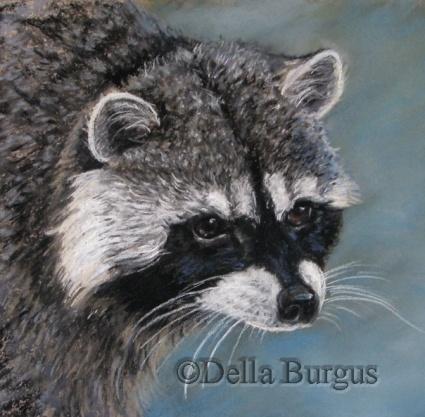 Wildlife Art. Raccoon by Della Burgus, painting by artist Art Helping Animals