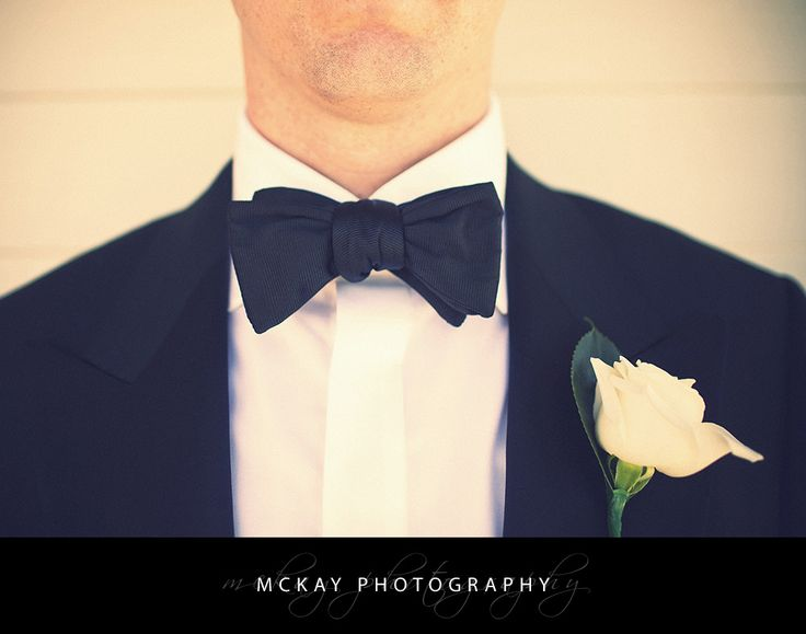 Bow tie - groom wedding