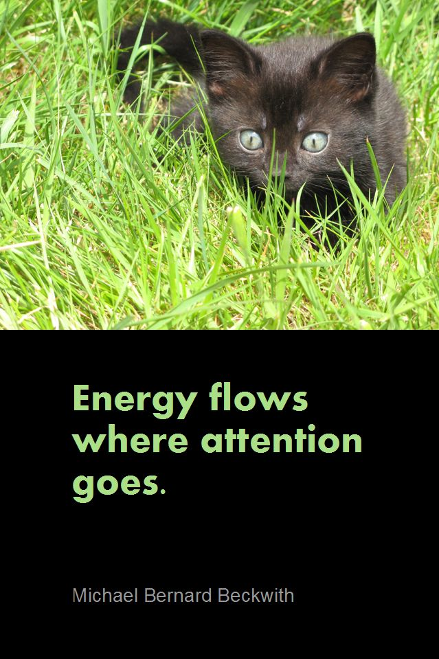Daily Quotation for August 25, 2012   #quote #quoteoftheday Energy flows where attention goes. - Michael Bernard Beckwith