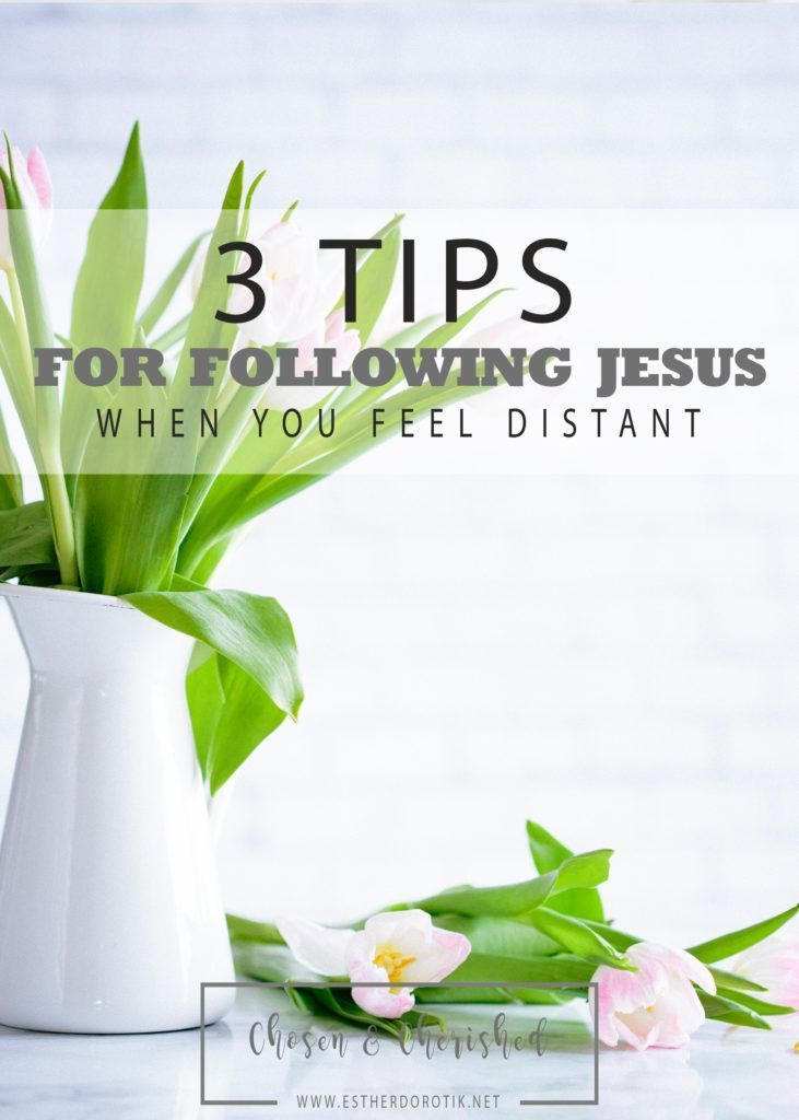 following Jesus, peter denies Christ, distance creates fear, chasing jesus closely, daily following Christ, help for following Jesus, what to do when Jesus feels distant