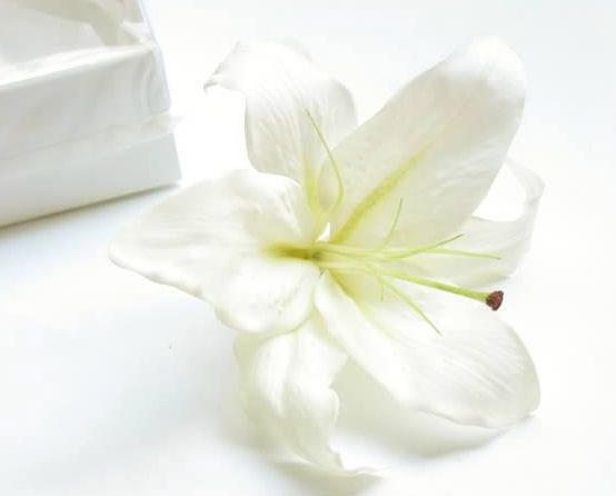 A single oriental lily makes a bold statement as a hair flower. Find your perfect wedding flowers at http://www.loveflowers.com.au/