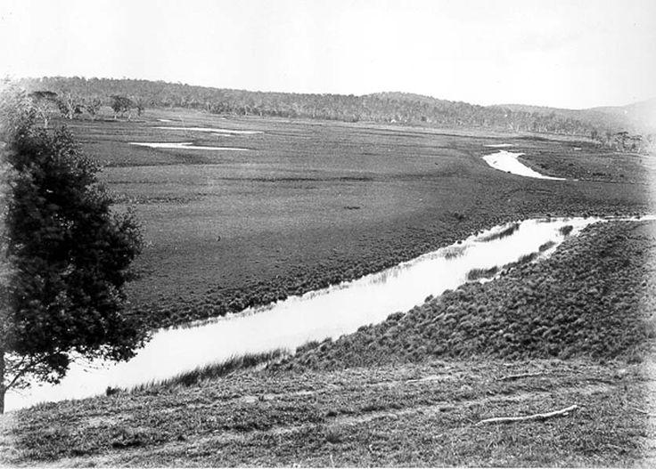 Malahide, Fingal valley, TAS