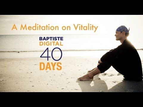 Enjoy this free 10 minute guided Meditation on Vitality from Baron Baptiste. Use it whenever you need to reconnect to your own inner vitality, or in conjunction with your daily meditation in your 40 Days to Personal Revolution program.