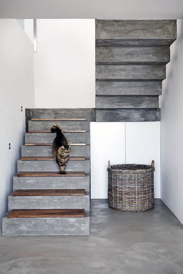 PIN 2 Cemented Stairs With Kiaat Treads, With A Cement Floor. The White  Walls Really Make The Cement Stand Out And Make The Cement Look Nicer Than  Usual.