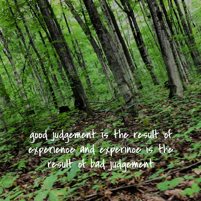 good judgement is the result of experience and experince is the result of bad judgement