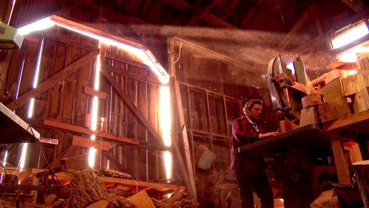 The Ox on Vimeo