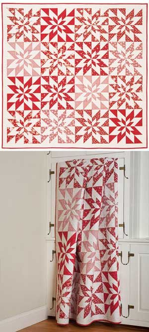 I already have a red and white quilt...but I LOVE this one! With minky on the back it would be the perfect Christmas quilt. POINSETTIA STARS QUILT PATTERN