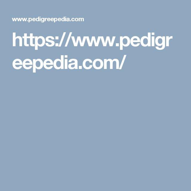 https://www.pedigreepedia.com/