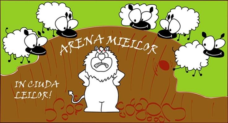 Arena Mieilor - totul despre crowd funding