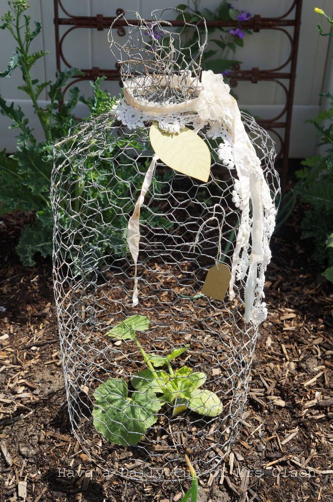 Delightful Make A Chicken Wire Cloche For Your Garden Or To Use In Vignettes.
