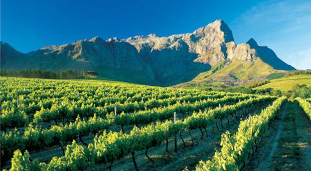 Stellenbosch, South Africa.    Considered one of the most beautiful wine areas in the world, with a Mediterranean climate and scenery reminiscent of the Napa Valley, without the crowds. http://www.stellenboschtourism.co.za/