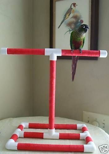 TABLETOP BIRD STAND PERCH PARROT CONURE PLAY GYM