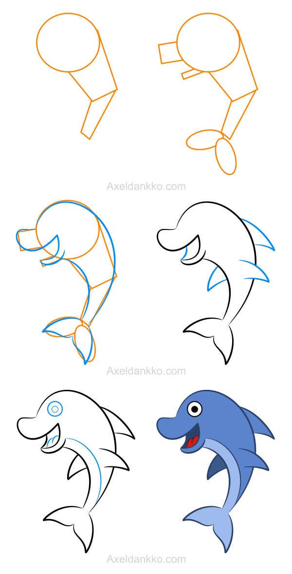 How to draw a dolphin - Comment dessiner un dauphin